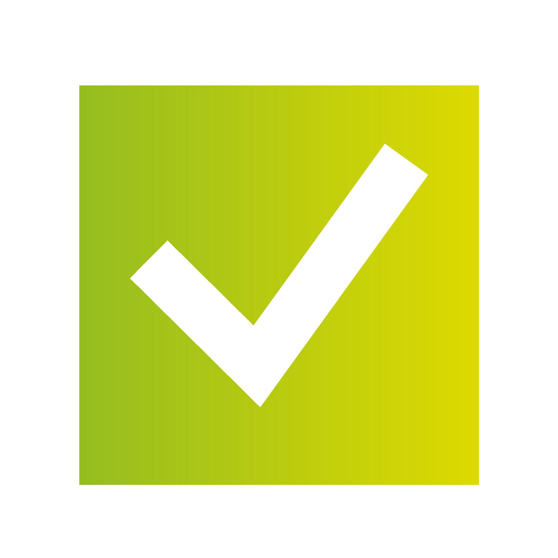 Nayar Systems Visión Logo